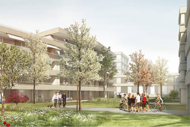 Arealentwicklung, Staufen – Wohnen und Arbeiten am Stadttor (2. Rang ...